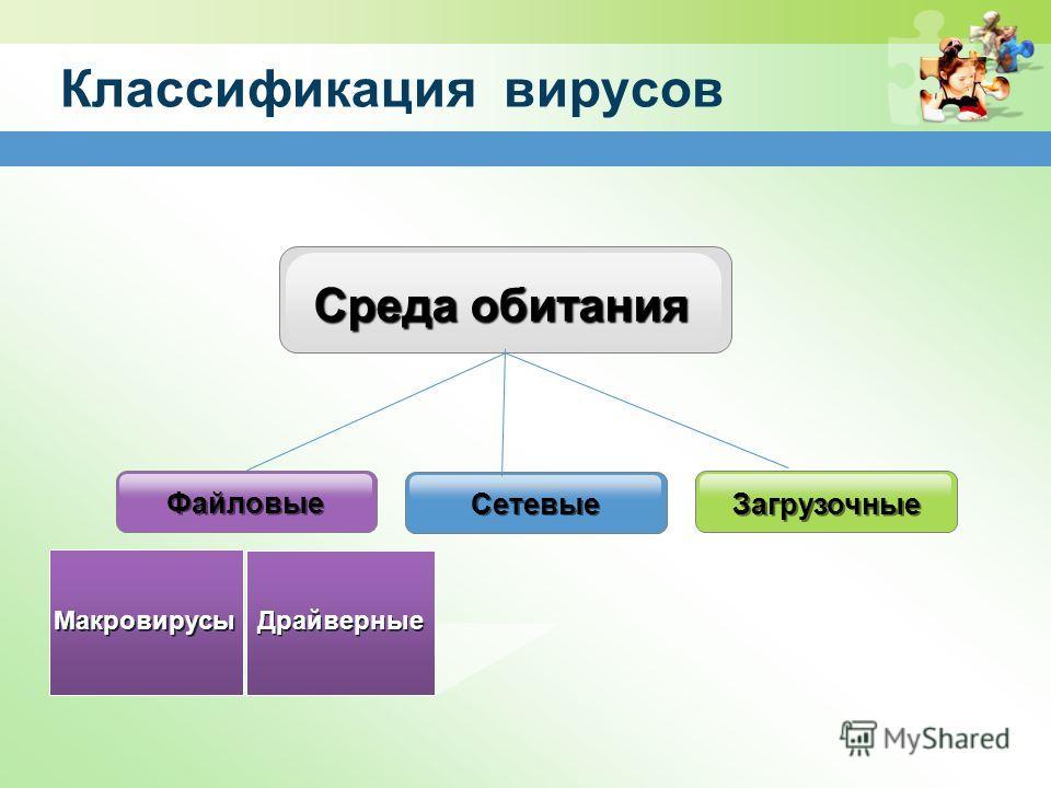 Классификация вирусов Среда обитания Загрузочные Файловые Макровирусы Драйверные Сетевые