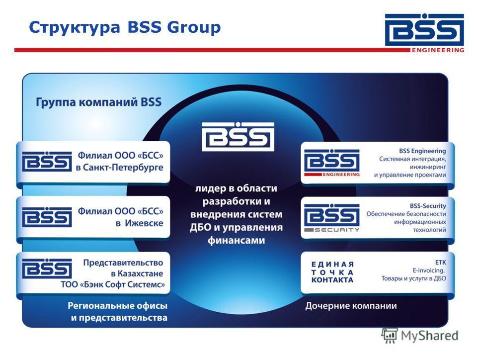 Структура BSS Group