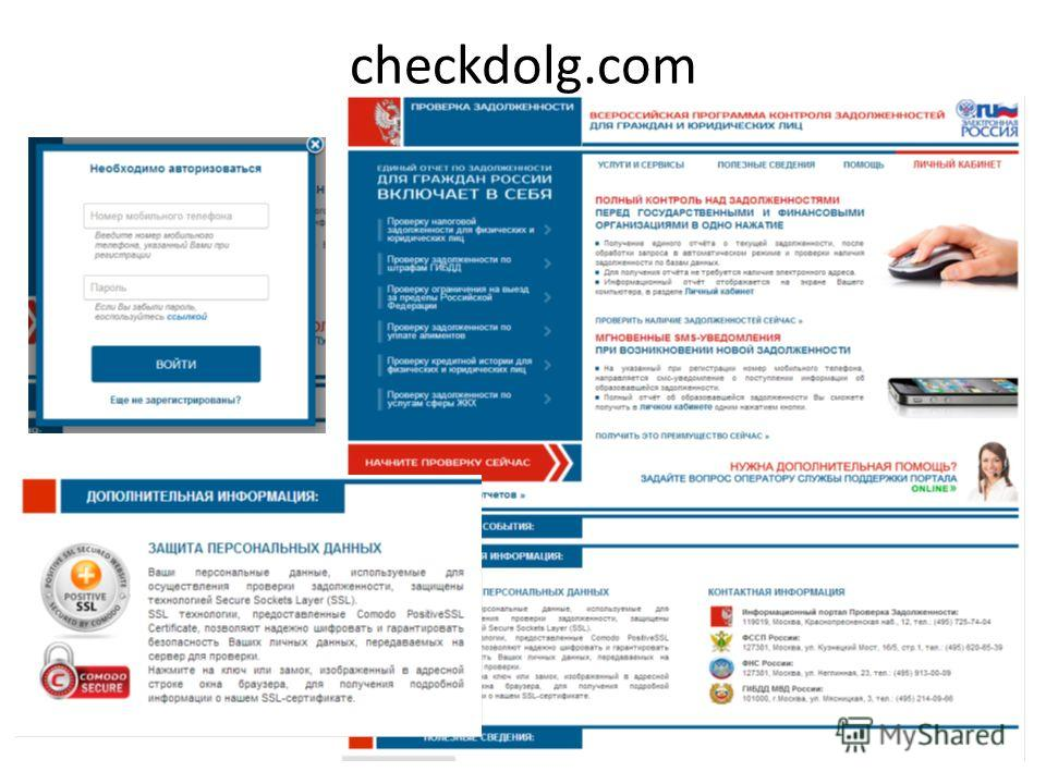 checkdolg.com