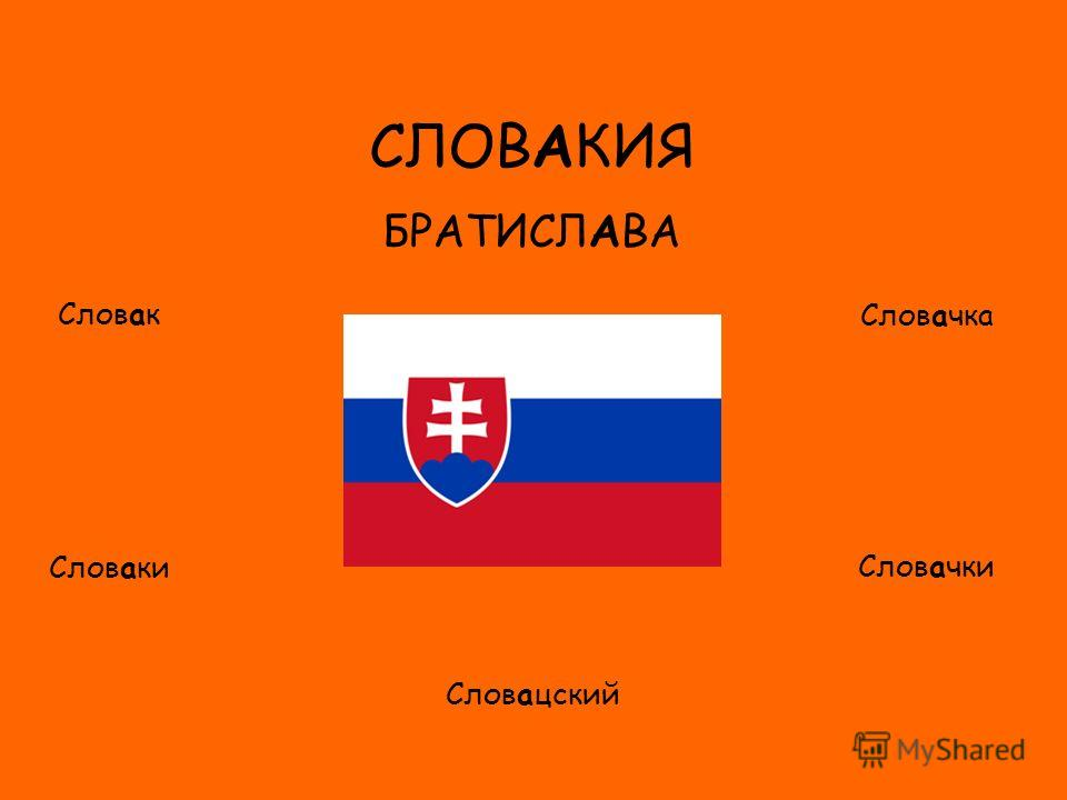 ФЛАГ СЛОВАКИЯ БРАТИСЛАВА Словак Словаки Словачка Словачки Словацский