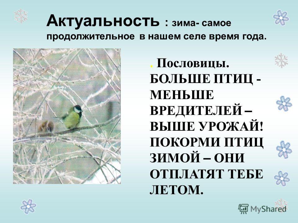 Актуальность : зима- самое продолжительное в нашем селе время года.. Пословицы. БОЛЬШЕ ПТИЦ - МЕНЬШЕ ВРЕДИТЕЛЕЙ – ВЫШЕ УРОЖАЙ! ПОКОРМИ ПТИЦ ЗИМОЙ – ОНИ ОТПЛАТЯТ ТЕБЕ ЛЕТОМ.