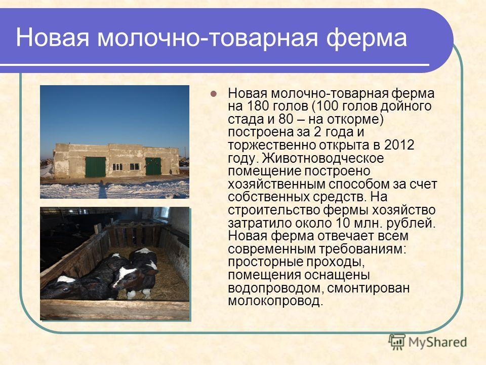 Новая молочно-товарная ферма Новая молочно-товарная ферма на 180 голов (100 голов дойного стада и 80 – на откорме) построена за 2 года и торжественно открыта в 2012 году. Животноводческое помещение построено хозяйственным способом за счет собственных