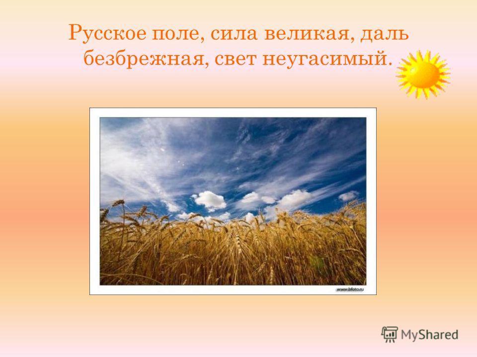 Русское поле, сила великая, даль безбрежная, свет неугасимый.