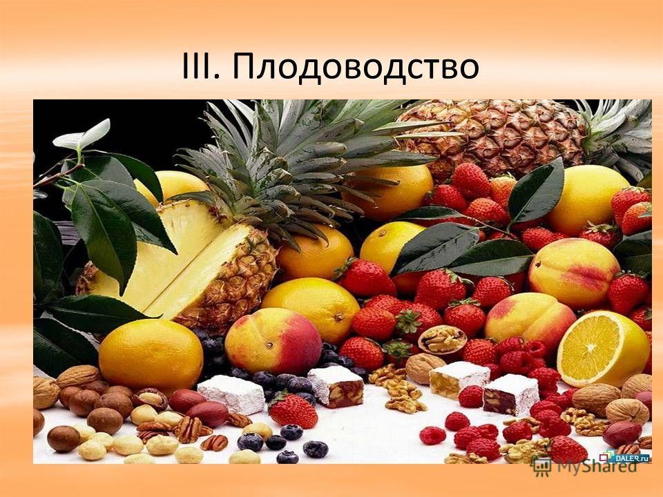III. Плодоводство
