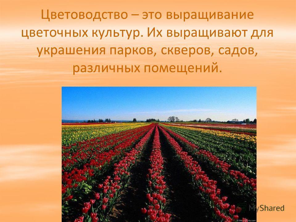 Цветоводство – это выращивание цветочных культур. Их выращивают для украшения парков, скверов, садов, различных помещений.