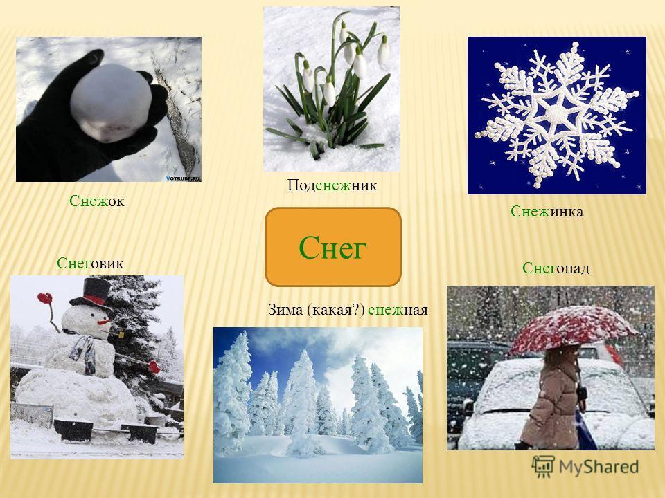Снег Снежок Подснежник Снежинка Снеговик Зима (какая?) снежная Снегопад