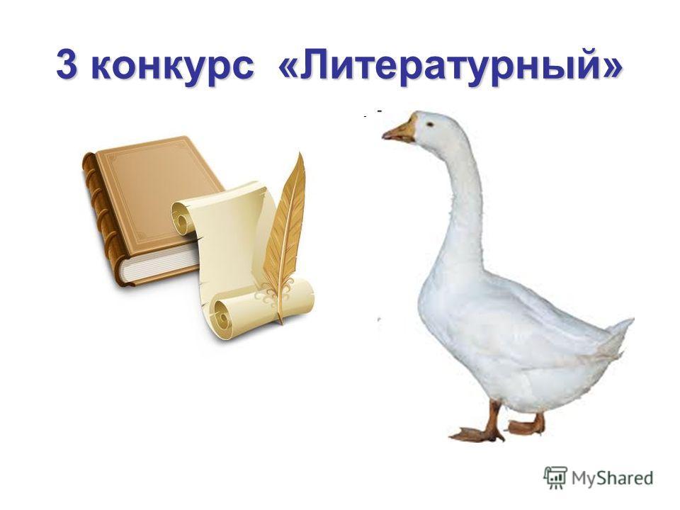 3 конкурс «Литературный»