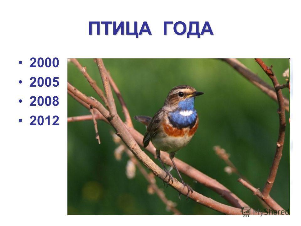 ПТИЦА ГОДА 2000 2005 2008 2012