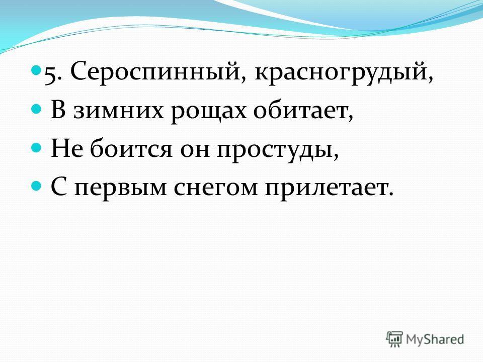 5. Сероспинный, красногрудый, В зимних рощах обитает, Не боится он простуды, С первым снегом прилетает.