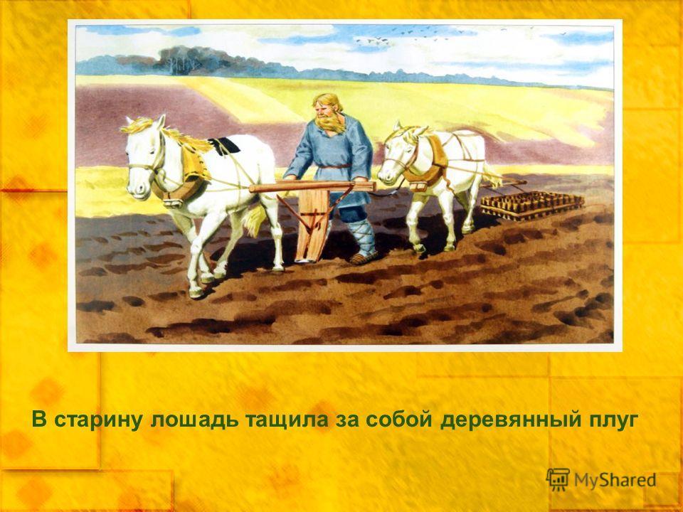 В старину лошадь тащила за собой деревянный плуг