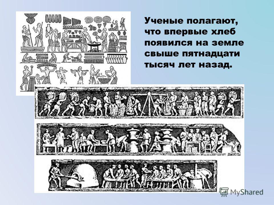 Ученые полагают, что впервые хлеб появился на земле свыше пятнадцати тысяч лет назад.