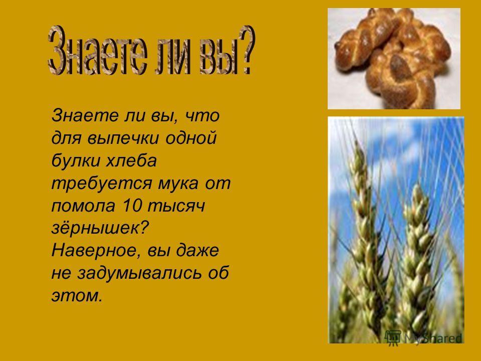 Знаете ли вы, что для выпечки одной булки хлеба требуется мука от помола 10 тысяч зёрнышек? Наверное, вы даже не задумывались об этом.