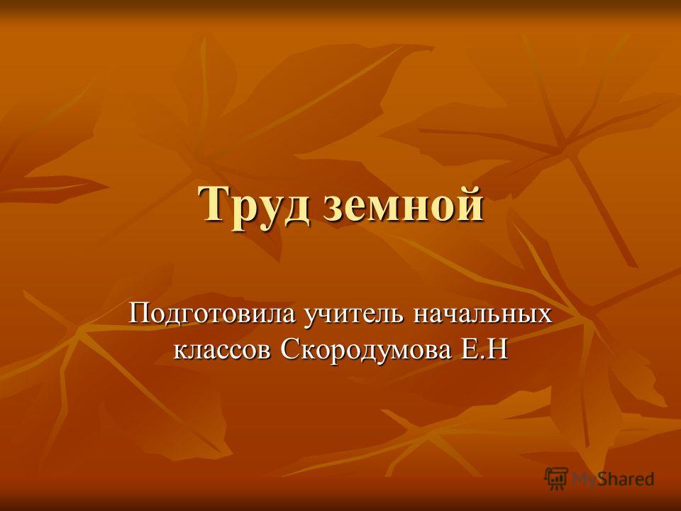 Труд земной Подготовила учитель начальных классов Скородумова Е.Н