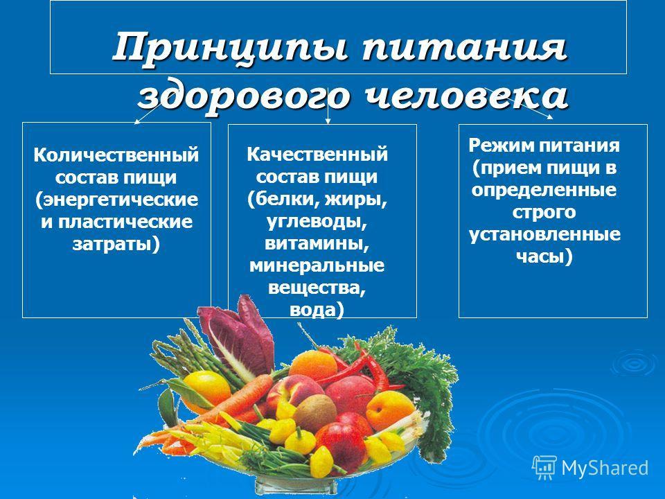 Принципы питания здорового человека Количественный состав пищи (энергетические и пластические затраты) Качественный состав пищи (белки, жиры, углеводы, витамины, минеральные вещества, вода) Режим питания (прием пищи в определенные строго установленны