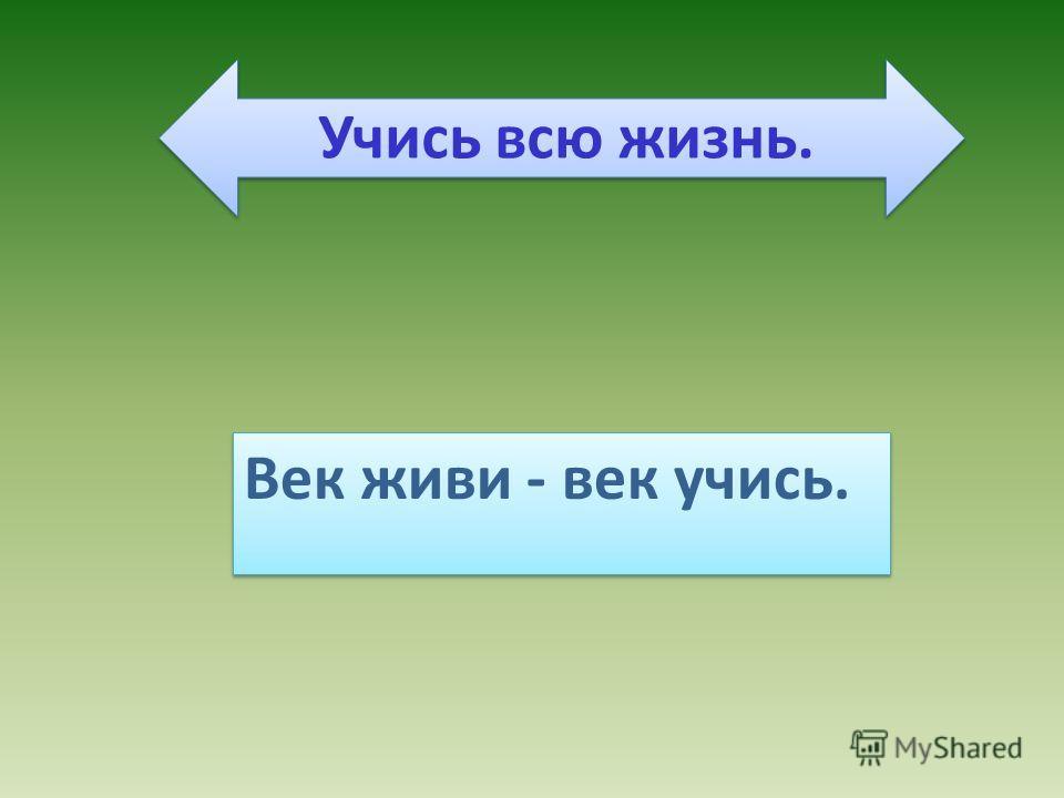 Век живи - век учись. Учись всю жизнь.