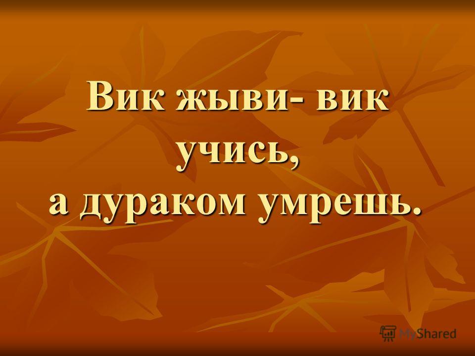 Вик жыви- вик учись, а дураком умрешь. Вик жыви- вик учись, а дураком умрешь.