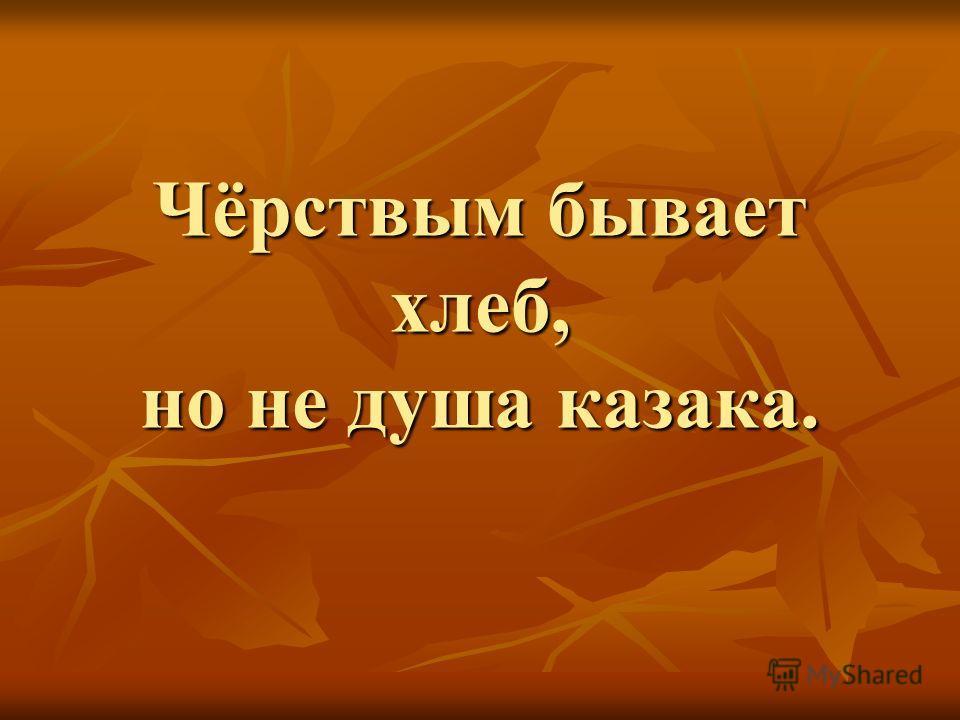 Чёрствым бывает хлеб, но не душа казака.