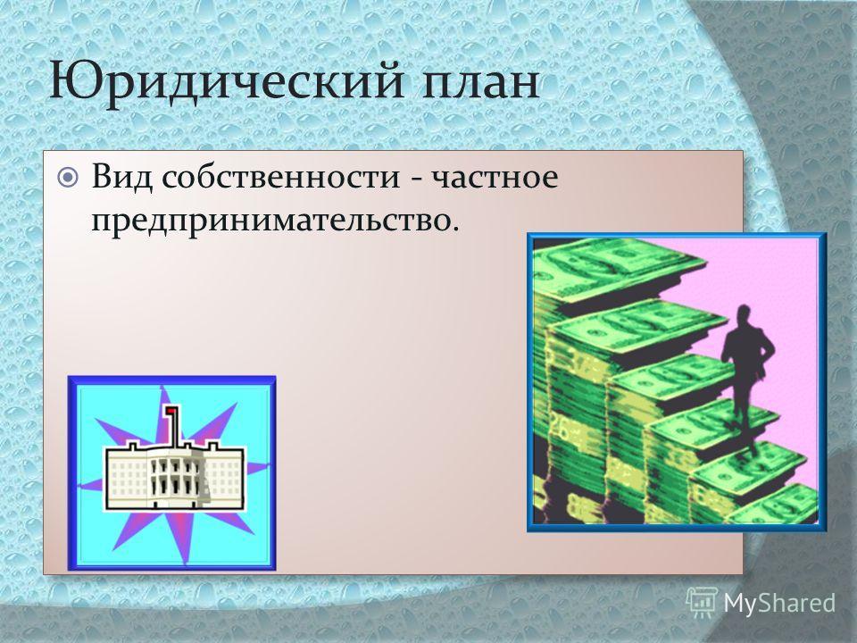 Юридический план Вид собственности - частное предпринимательство.