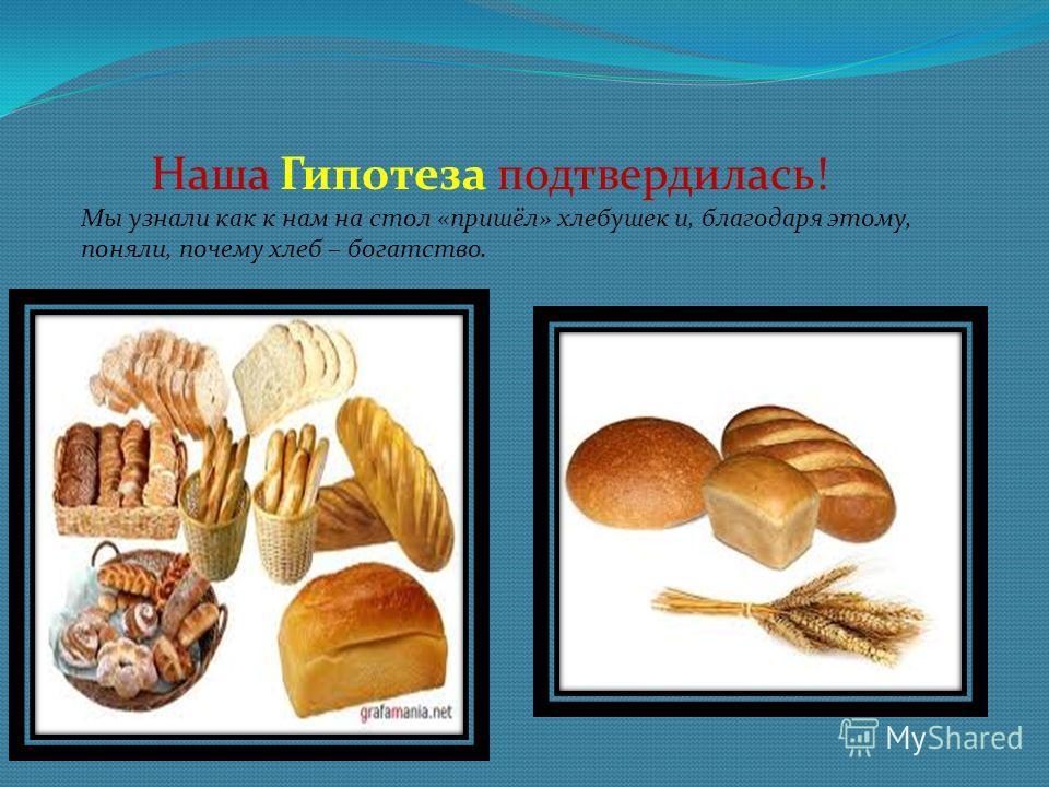 Наша Гипотеза подтвердилась! Мы узнали как к нам на стол «пришёл» хлебушек и, благодаря этому, поняли, почему хлеб – богатство.