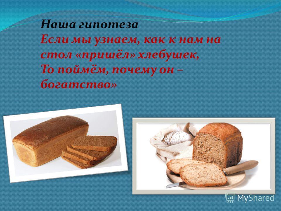 Наша гипотеза Если мы узнаем, как к нам на стол «пришёл» хлебушек, То поймём, почему он – богатство»