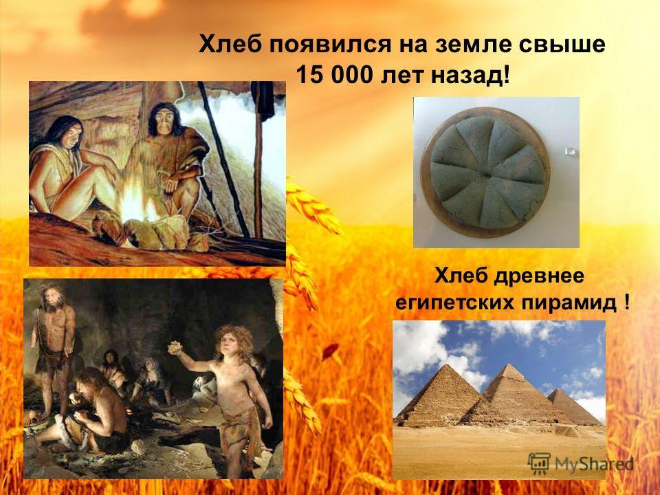 Хлеб появился на земле свыше 15 000 лет назад! Хлеб древнее египетских пирамид !