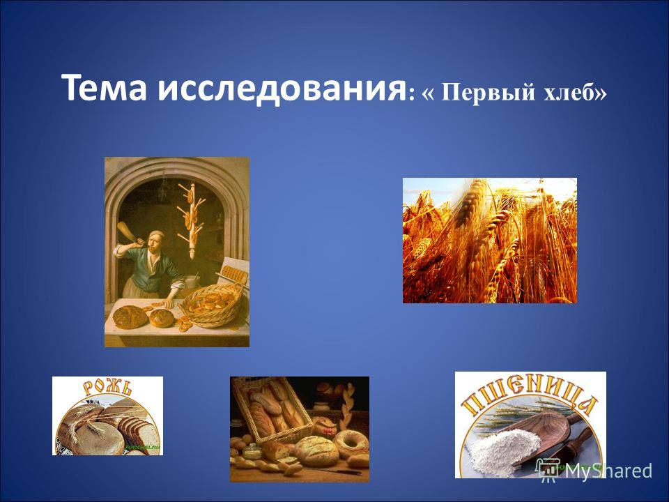 Тема исследования : « Первый хлеб»