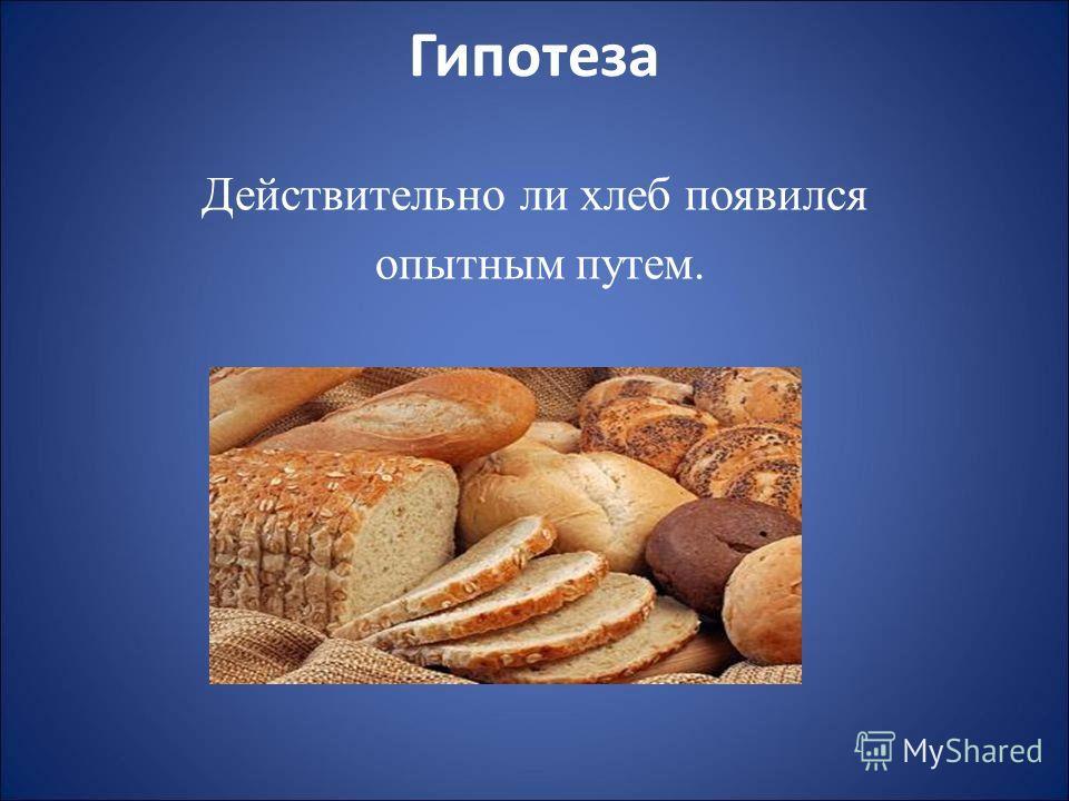Гипотеза Действительно ли хлеб появился опытным путем.
