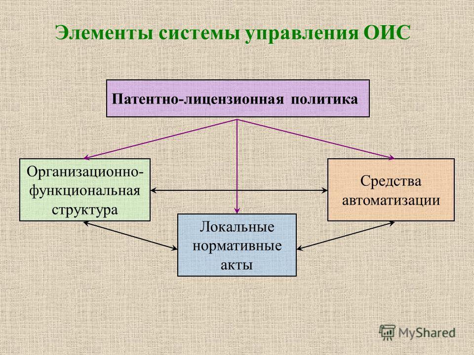 Элементы системы управления ОИС Патентно-лицензионная политика Организационно- функциональная структура Локальные нормативные акты Средства автоматизации