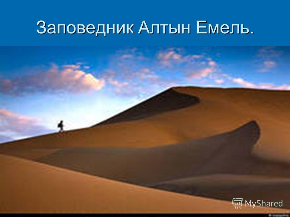 Заповедник Алтын Емель.