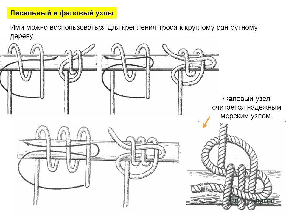 Лисельный и фаловый узлы Ими можно воспользоваться для крепления троса к круглому рангоутному дереву. Фаловый узел считается надежным морским узлом.