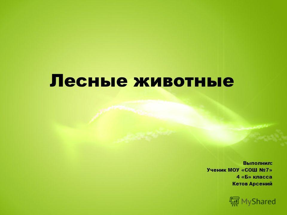 Лесные животные Выполнил: Ученик МОУ «СОШ 7» 4 «Б» класса Кетов Арсений