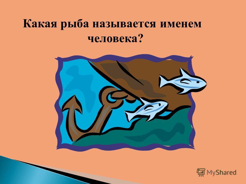 Какая рыба называется именем человека?