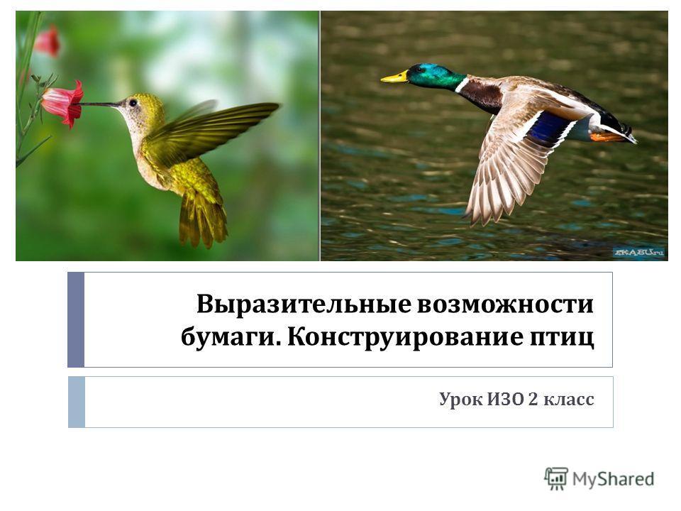 Выразительные возможности бумаги. Конструирование птиц Урок ИЗО 2 класс