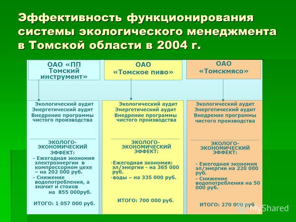 Эффективность функционирования системы экологического менеджмента в Томской области в 2004 г.