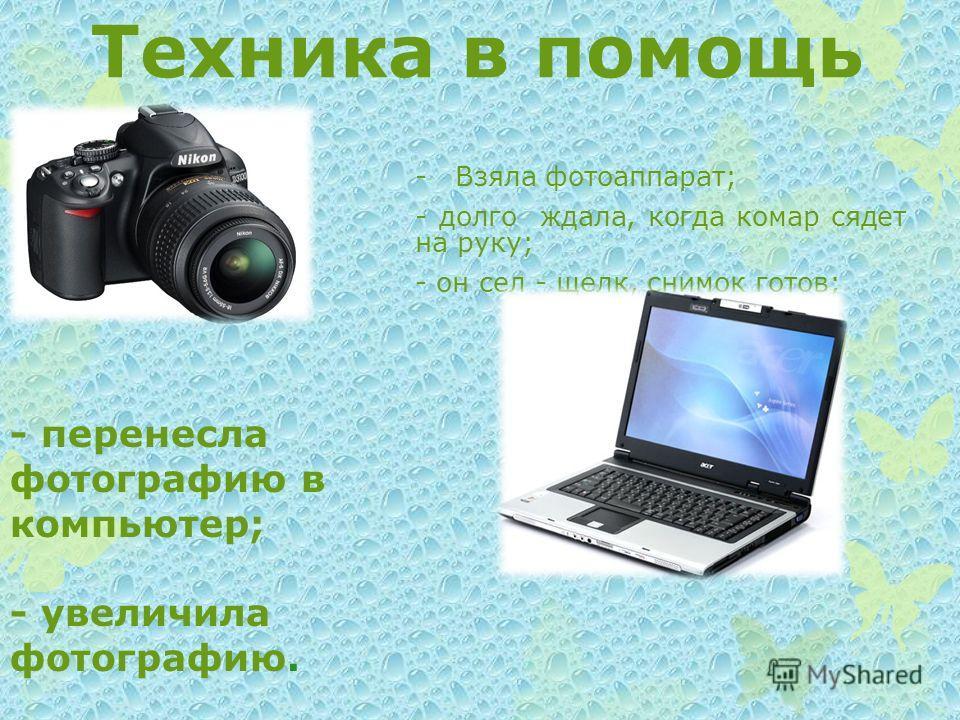 Техника в помощь - Взяла фотоаппарат; - долго ждала, когда комар сядет на руку; - он сел - щелк, снимок готов; - перенесла фотографию в компьютер; - увеличила фотографию.