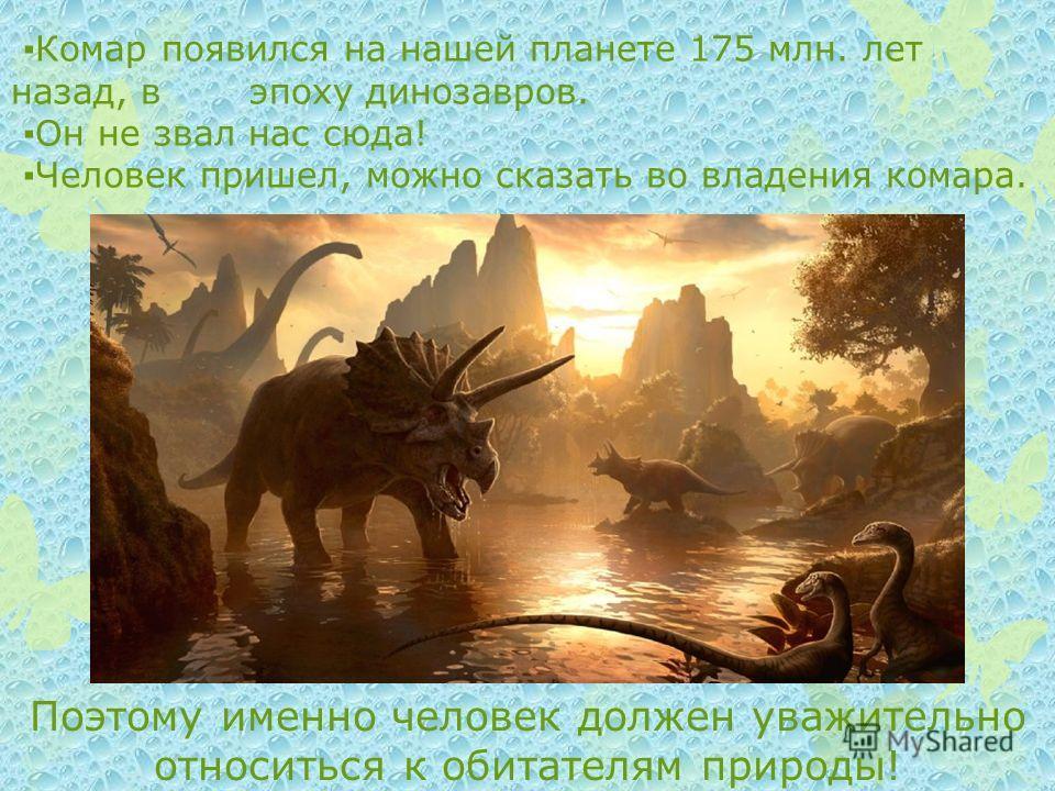 Комар появился на нашей планете 175 млн. лет назад, в эпоху динозавров. Он не звал нас сюда! Человек пришел, можно сказать во владения комара. Поэтому именно человек должен уважительно относиться к обитателям природы!