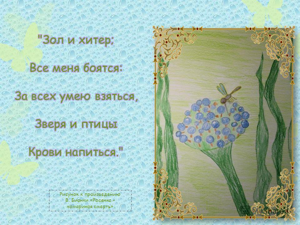 Рисунок к произведению В. Бианки «Росянка – комариная смерть»