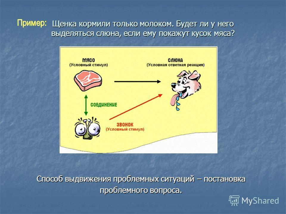 Щенка кормили только молоком. Будет ли у него выделяться слюна, если ему покажут кусок мяса? Способ выдвижения проблемных ситуаций – постановка проблемного вопроса.