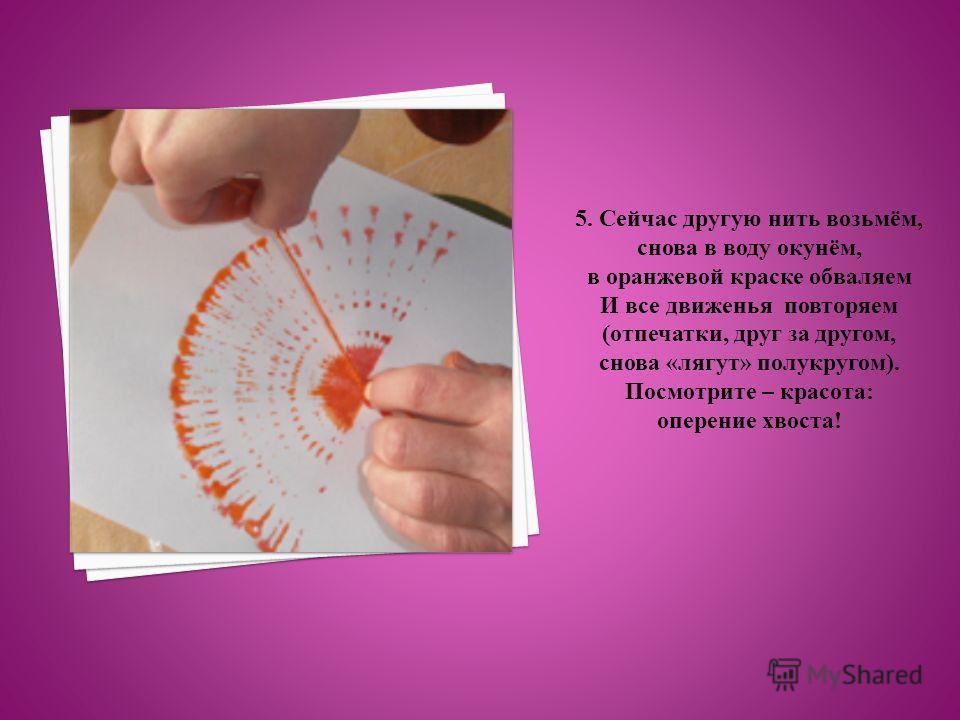 5. Сейчас другую нить возьмём, снова в воду окунём, в оранжевой краске обваляем И все движенья повторяем (отпечатки, друг за другом, снова «лягут» полукругом). Посмотрите – красота: оперение хвоста!