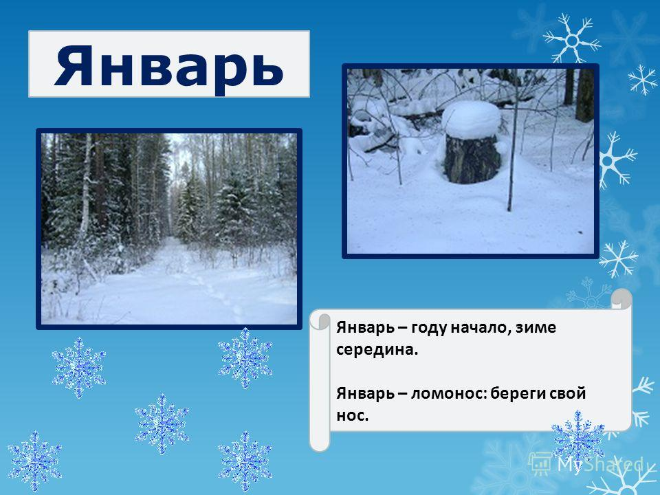Январь Январь – году начало, зиме середина. Январь – ломонос: береги свой нос.