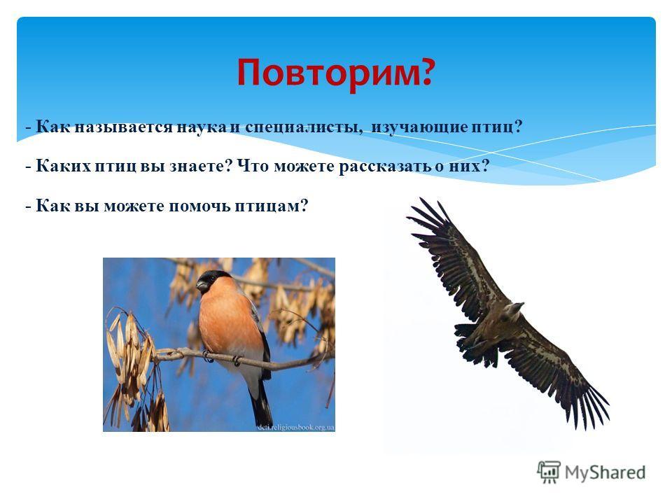 - Как называется наука и специалисты, изучающие птиц? - Каких птиц вы знаете? Что можете рассказать о них? - Как вы можете помочь птицам? Повторим?