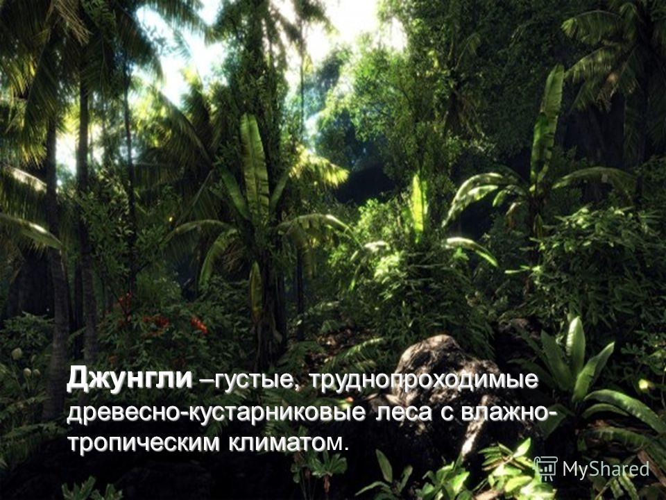 Джунгли –густые, труднопроходимые древесно-кустарниковые леса с влажно- тропическим климато Джунгли –густые, труднопроходимые древесно-кустарниковые леса с влажно- тропическим климатом.
