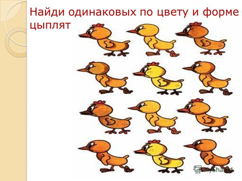 13 Найди одинаковых по цвету и форме цыплят