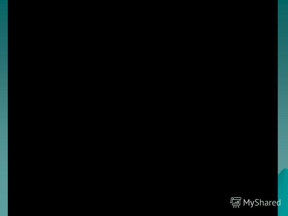 Видео «Лес»