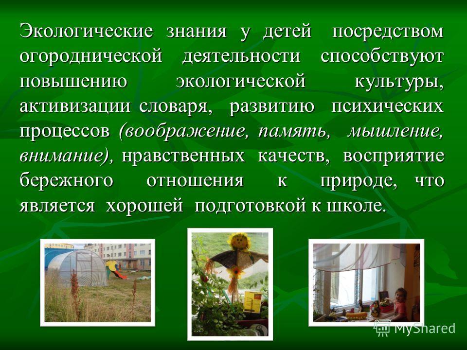 Экологические знания у детей посредством огороднической деятельности способствуют повышению экологической культуры, активизации словаря, развитию психических процессов (воображение, память, мышление, внимание), нравственных качеств, восприятие бережн