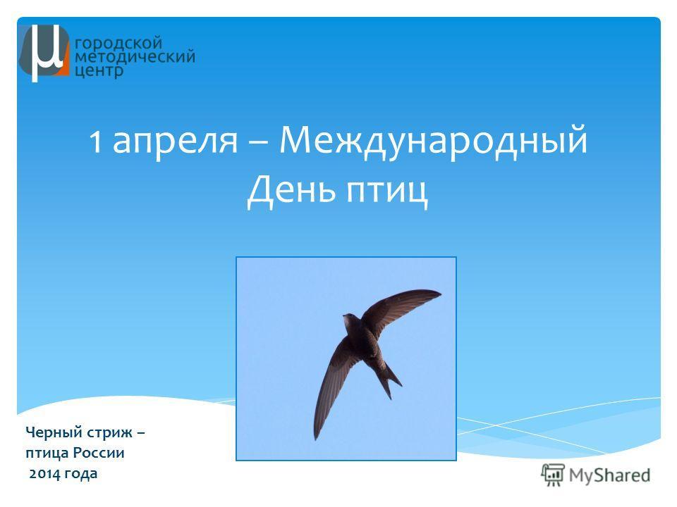 1 апреля – Международный День птиц Черный стриж – птица России 2014 года