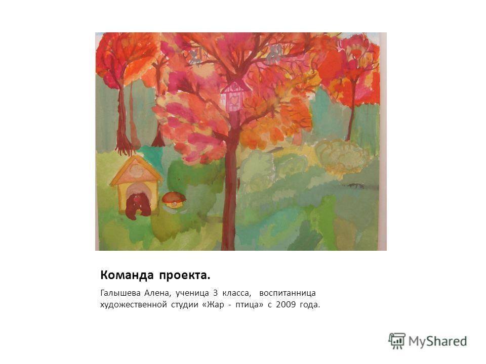 Команда проекта. Галышева Алена, ученица 3 класса, воспитанница художественной студии «Жар - птица» с 2009 года.
