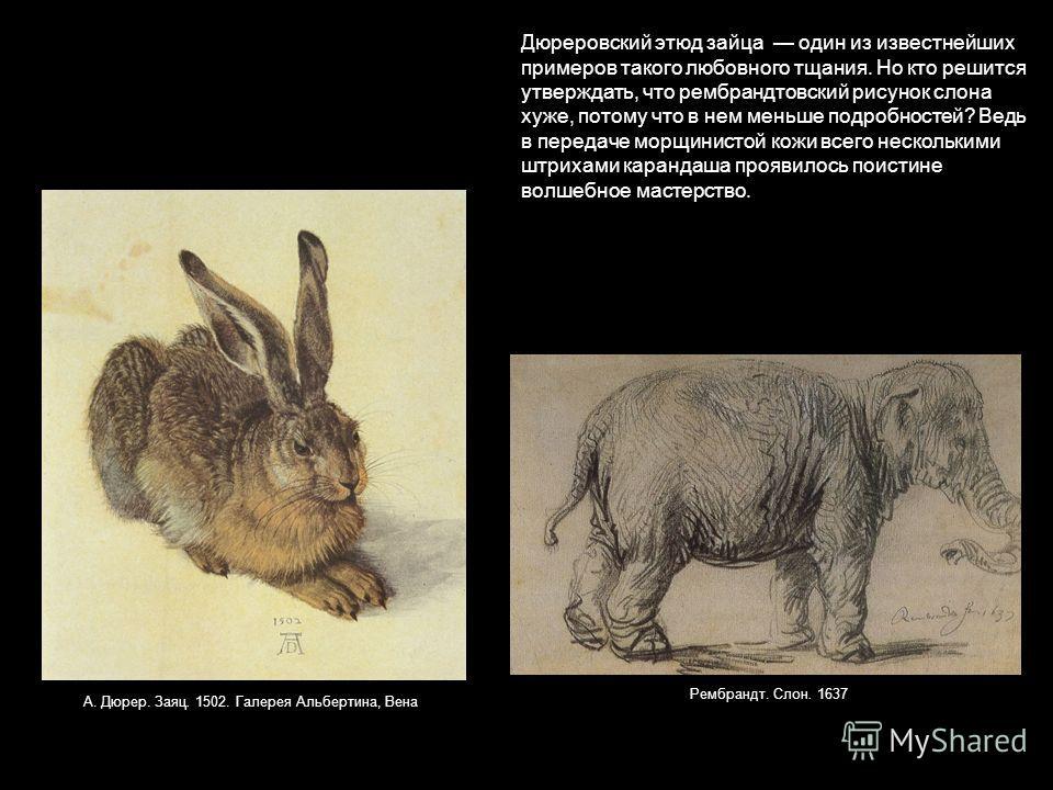 Дюреровский этюд зайца один из известнейших примеров такого любовного тщания. Но кто решится утверждать, что рембрандтовский рисунок слона хуже, потому что в нем меньше подробностей? Ведь в передаче морщинистой кожи всего несколькими штрихами каранда
