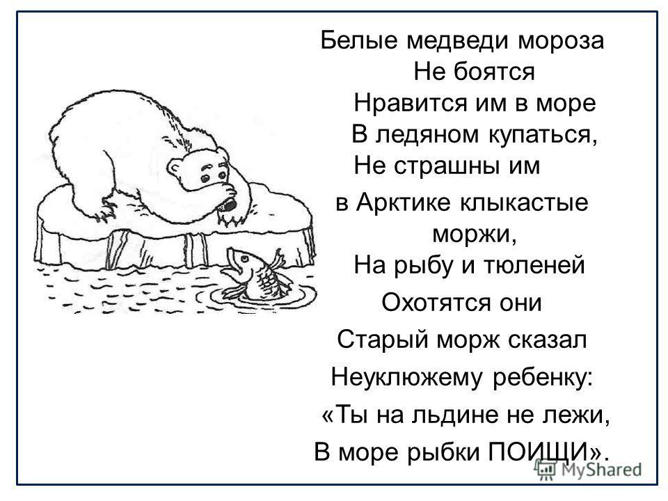 Белые медведи мороза Не боятся Нравится им в море В ледяном купаться, Не страшны им в Арктике клыкастые моржи, На рыбу и тюленей Охотятся они Старый морж сказал Неуклюжему ребенку: «Ты на льдине не лежи, В море рыбки ПОИЩИ».