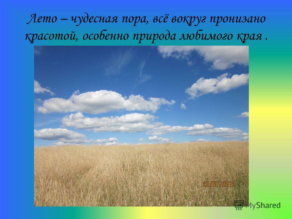 Лето – чудесная пора, всё вокруг пронизано красотой, особенно природа любимого края.